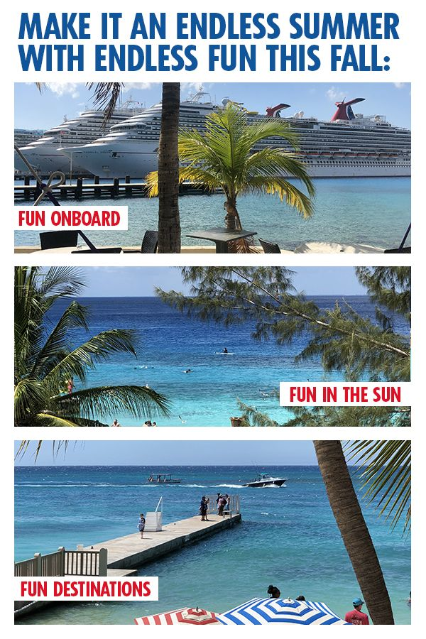 My Family And I Have Been Planning A Cruise For A Year Now