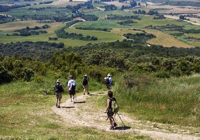Next year, I will be one of these pilgrims en route on El Camino de Santiago de Compostela.