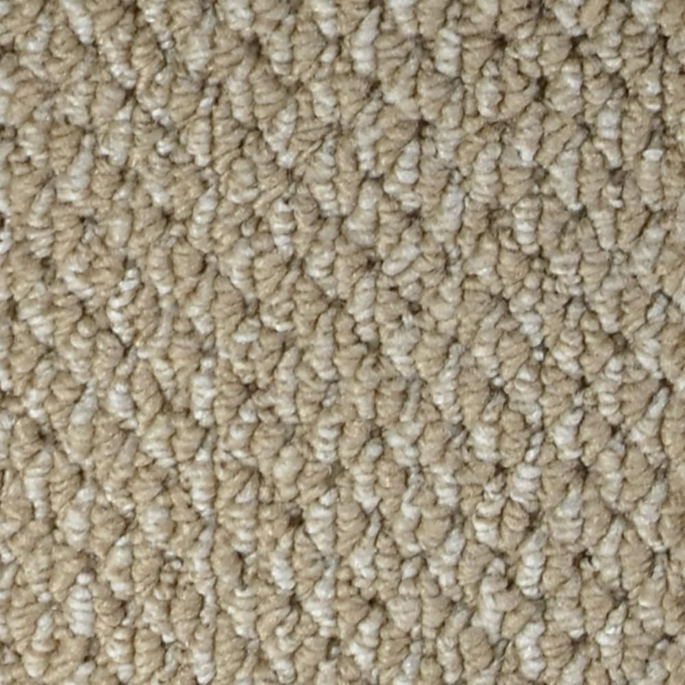 Best Trafficmaster Carpet Sample Follow Up Color Wakefield 640 x 480