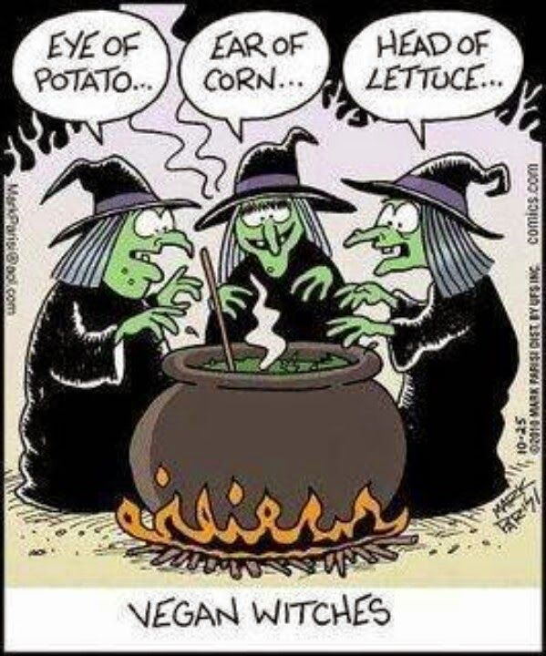 Charmant Funny Vegan Witches Cartoon. Halloween ...