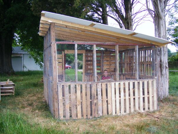 Shadowmanes chicken shack pallet chicken coops coops for Pallet chicken coup