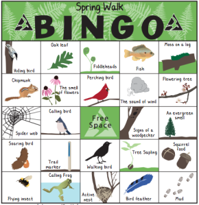 Play Spring Walk Bingo! | Bingo, Girl scout camping, Activities