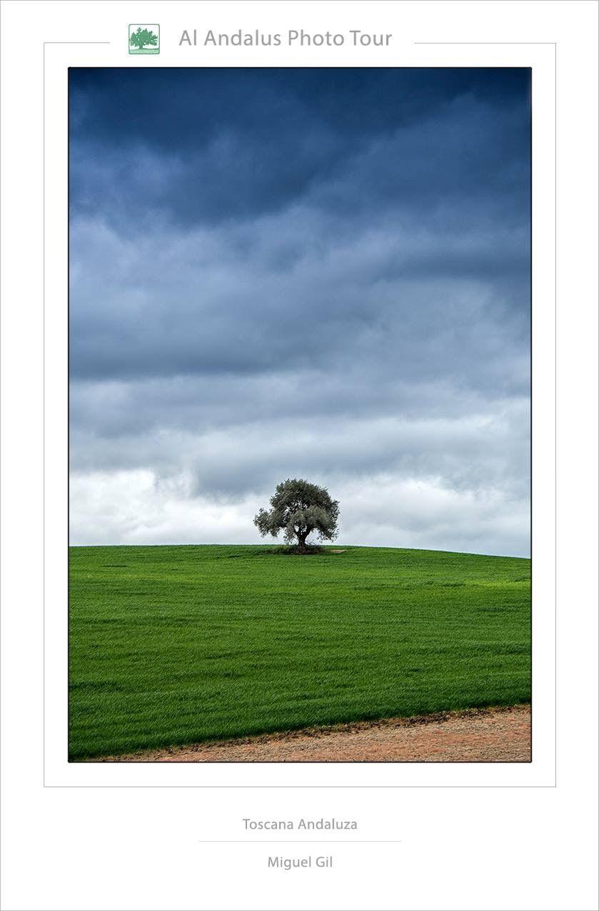 Toscana Andaluza