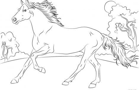 Running Horse Coloring Pages For Girls Horse Coloring Books Horse Coloring Pages Horse Coloring