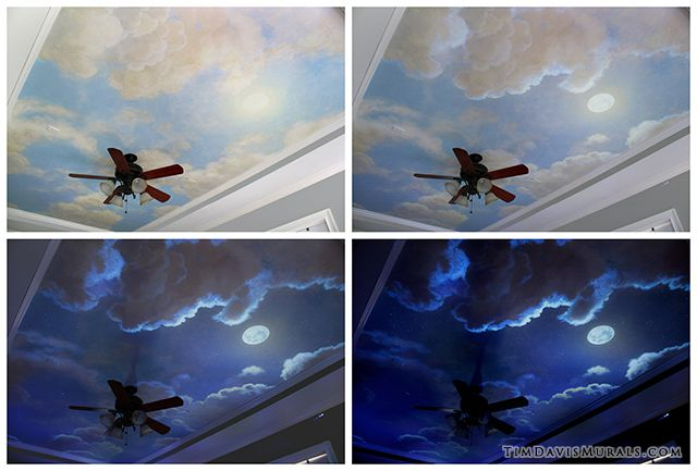 Amazing ceiling by a very talented artist :: Check out his website...