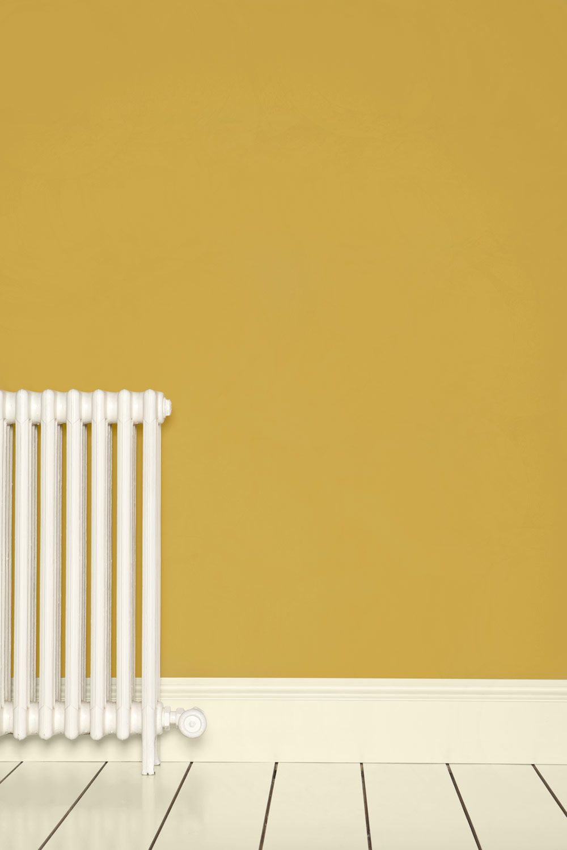 Colours | Print Room Yellow | Farrow & Ball | Elaine Shannon living ...