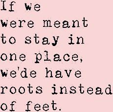 Photo of Roots Instead Of Feet Travel Quote Postcard | Zazzle.com