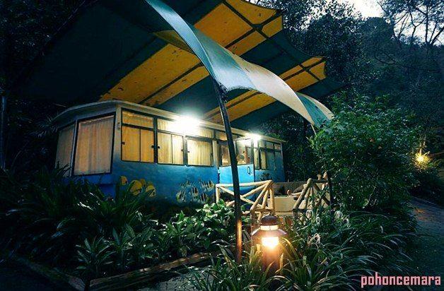 Penginapan Atau Hotel Caravan Taman Safari Cisarua Bogor Pemandangan Safari Penginapan