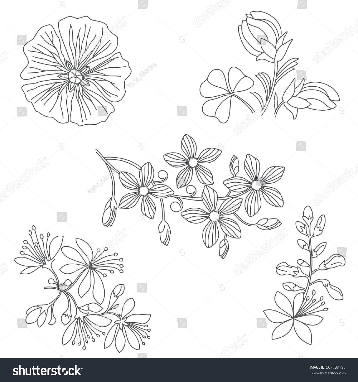 Vetor stock de Set Black White Flowers On White (livre de direitos) 507789193