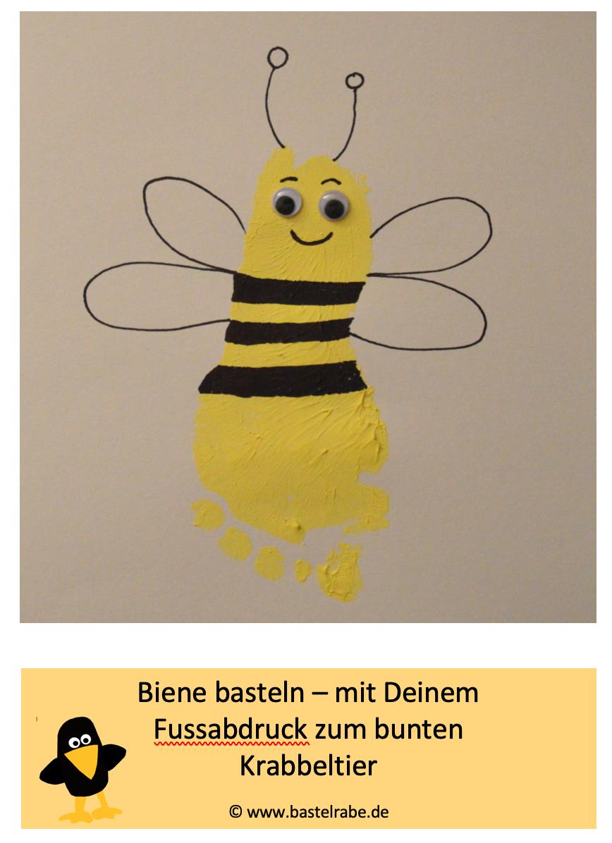 Photo of Tinker Bee