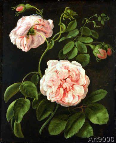 Johann Friedrich August Tischbein - Flower Study