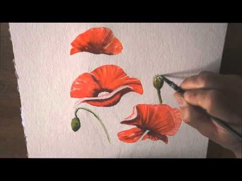 Demo Aquarelle Les Coquelicots Watercolor Tutorial Youtube