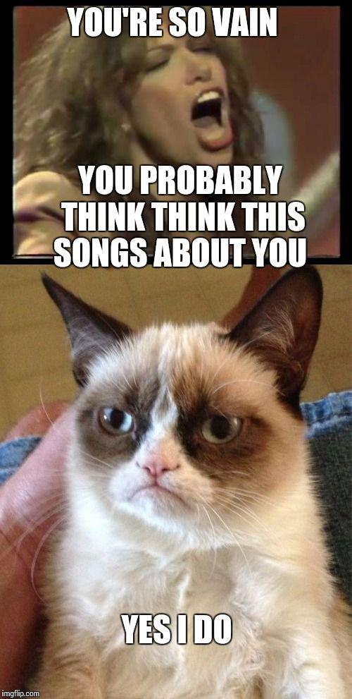 Vain Grumpy Cat Grumpy Cat Grumpy Cat Humor Grumpy Cat Meme