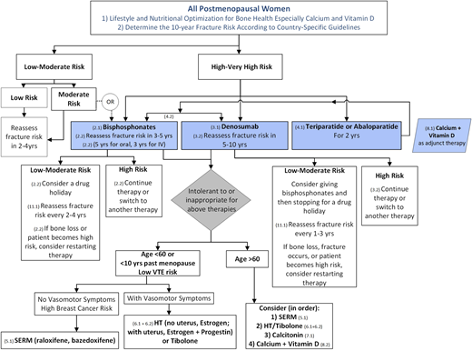 17++ Osteoporosis guidelines 2019 endocrine society info