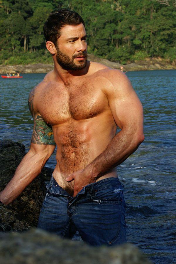 Gay hairy hot men
