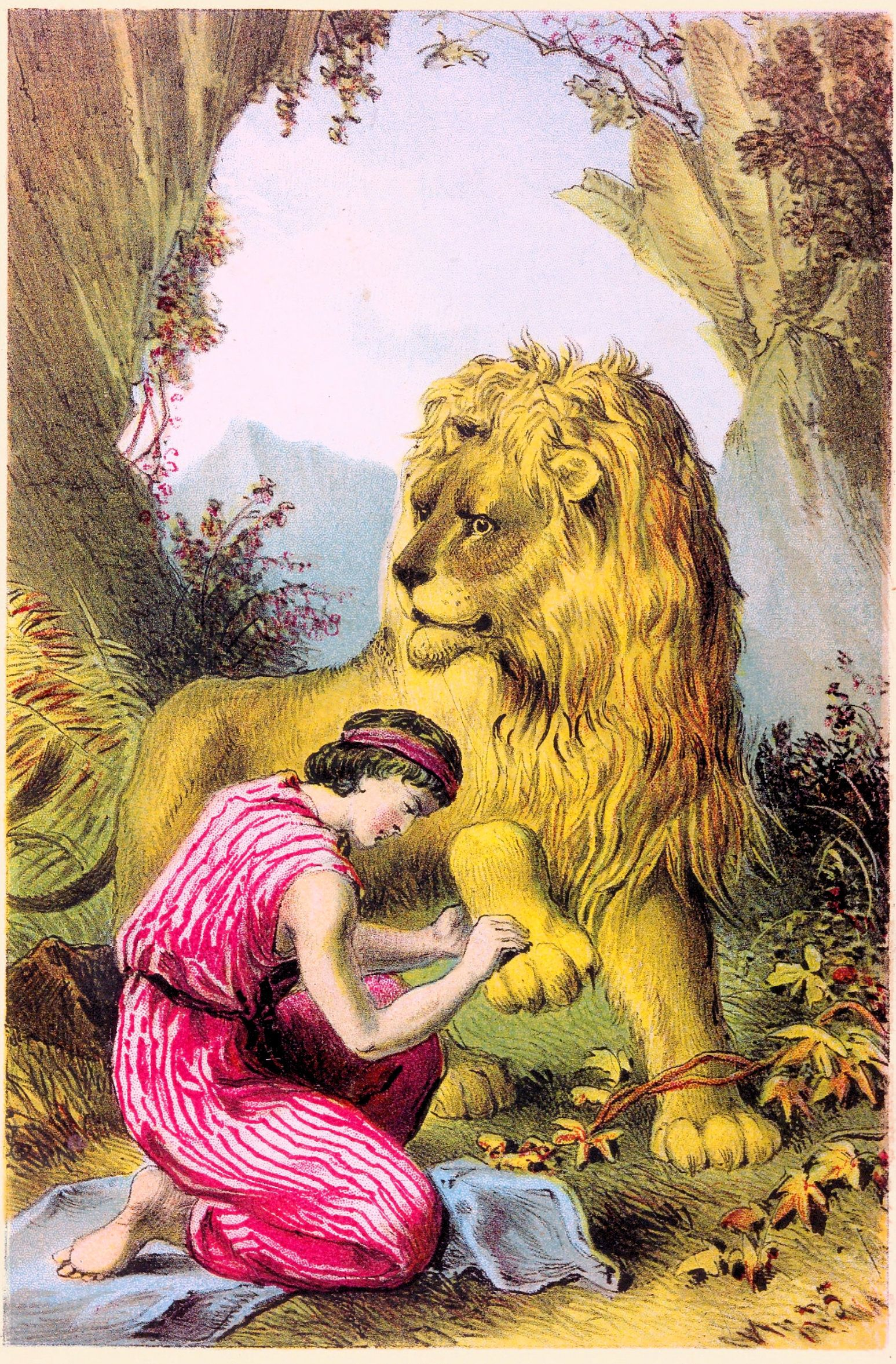 Animal Jungle Lion With Man Androcles