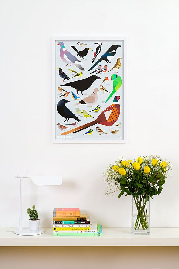 A British Bird Chart by Build, an exclusive design for (by)Build Shop, 2014. The limited edition print features 25 of the most common birds found in gardens, hedgerows and parks around Great Britain— from the tiny Goldcrest with his yellow cap to the mighty Pheasant, as well as the country's only naturalised parrot, the Ring-necked Parakeet. Finches, Tits, a Sparrow, a Starling and the clever Carrion Crow also feature.
