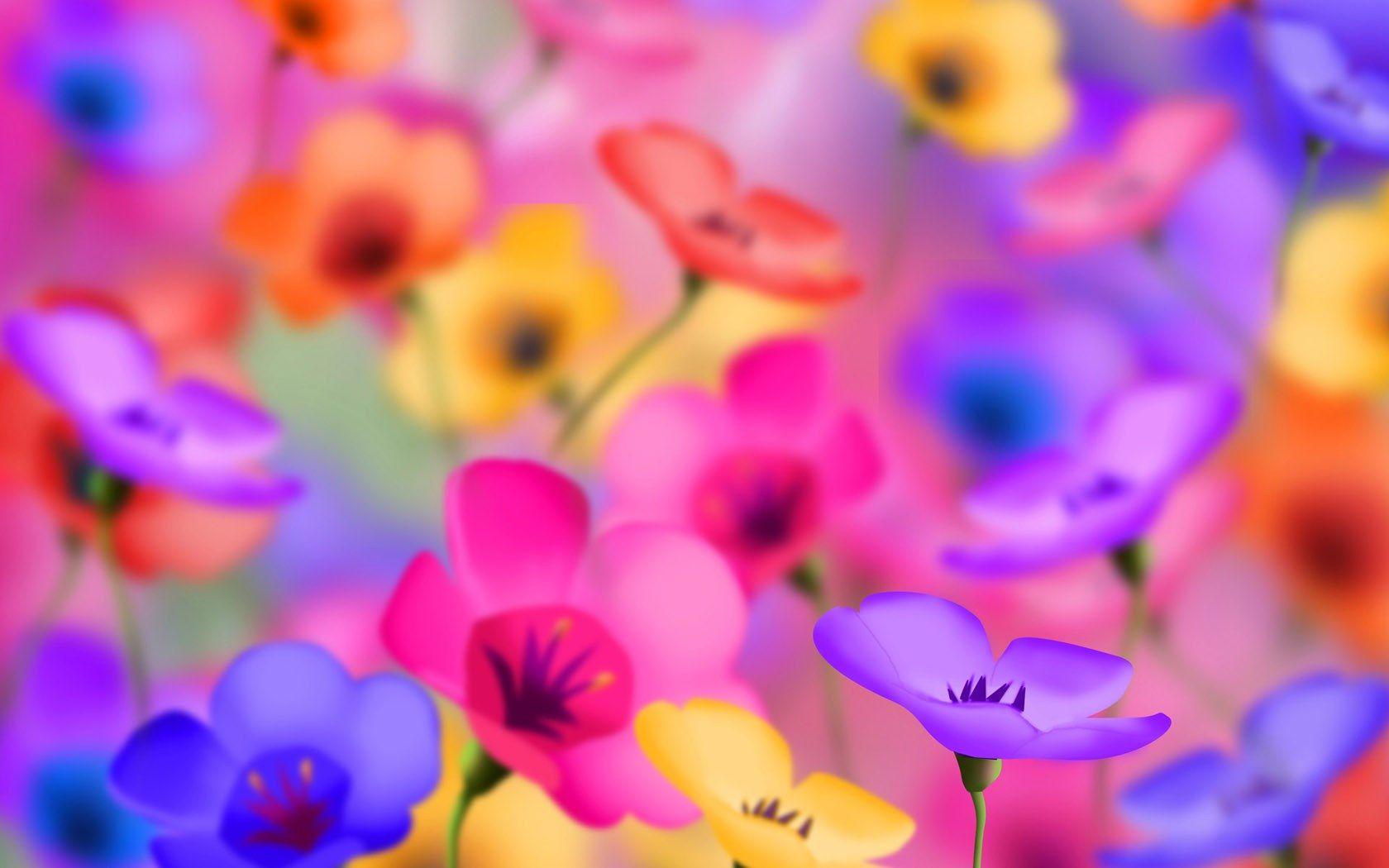 Colorful Flowers Jpg 1680 1050 Pixels Beautiful Flowers Wallpapers Colorful Flowers Flower Backgrounds