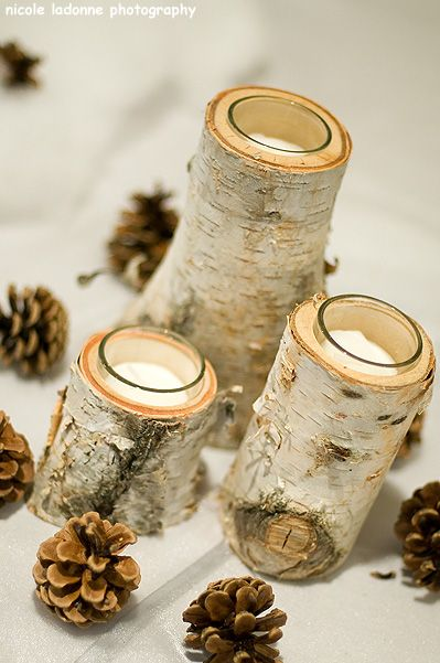Hallowed Out Birch Centerpieces More
