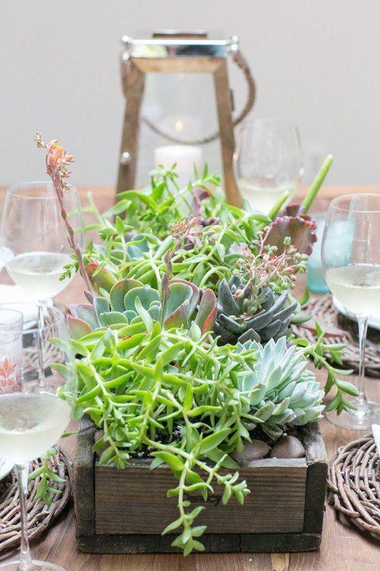 centre de table avec des succulents