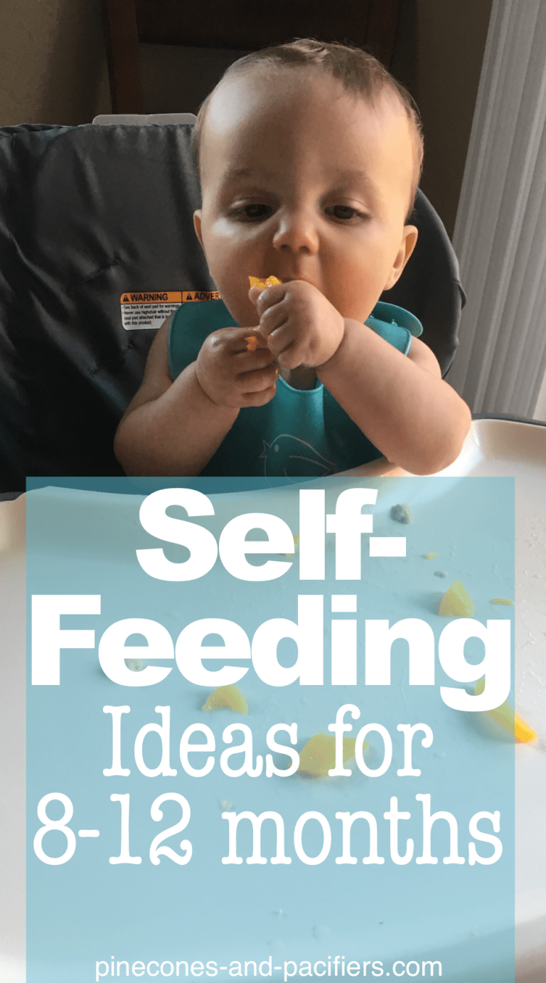 Self-Feeding ideas for 8-12 Month Olds - Pinecones and Pacifiers.