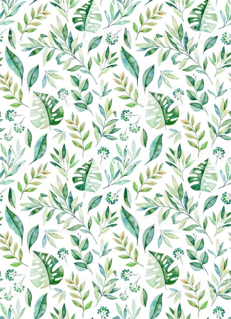 Watercolor leaves branch seamless pattern on white background....
