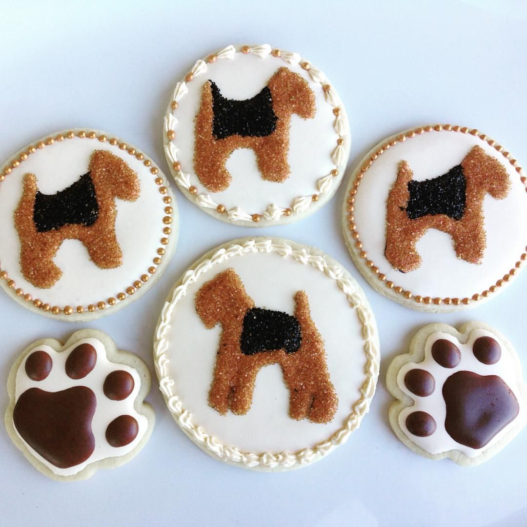 A sweet custom order of Airedale decorated cookies for the Airedale Walk. #decoratedcookies #decoratedsugarcookies #sugarcookies #cookies #cookiesofinstagram #cookieoftheday #royalicing #ivory #airedale #airedales #dog #airedalesofinatagram #pawprints #cookie #instacookie #instasweet #instadessert #baker #bakery #cookiedecorator #sweetsioux #modesto #turlock #ceres