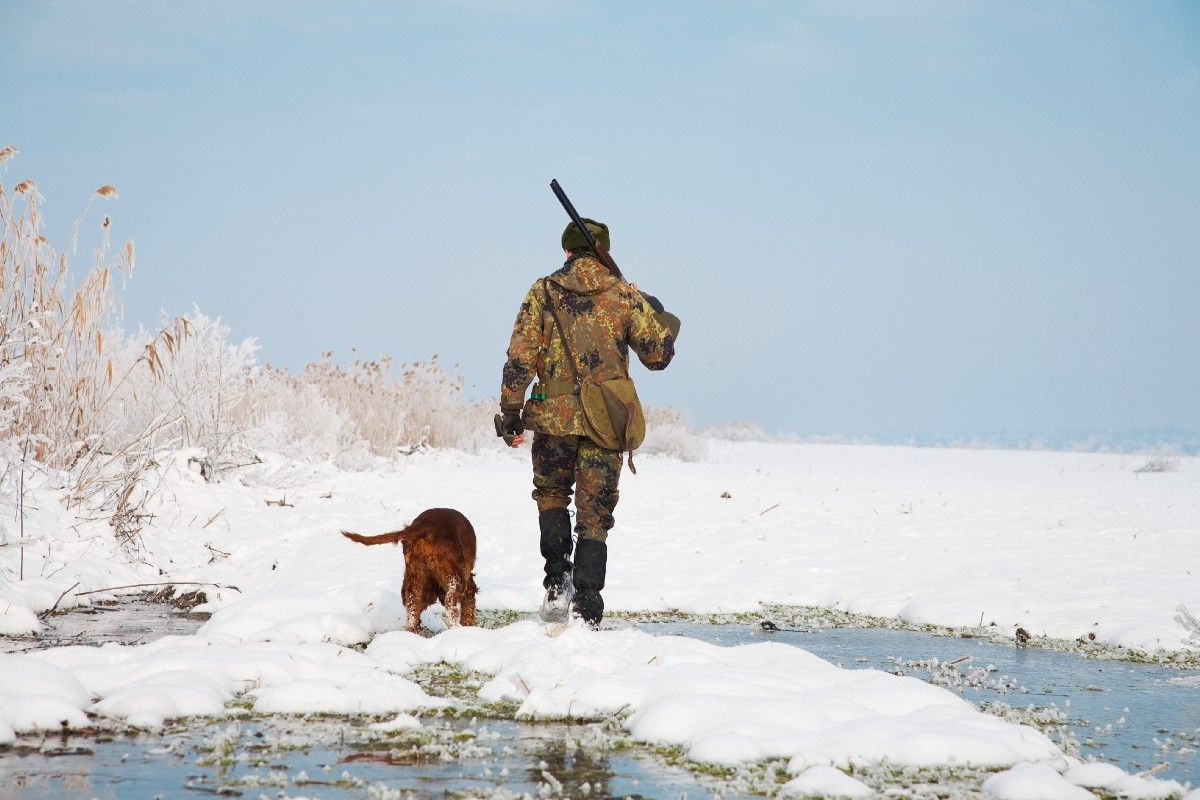 A Question Of Commitment This Or That Questions Hunting