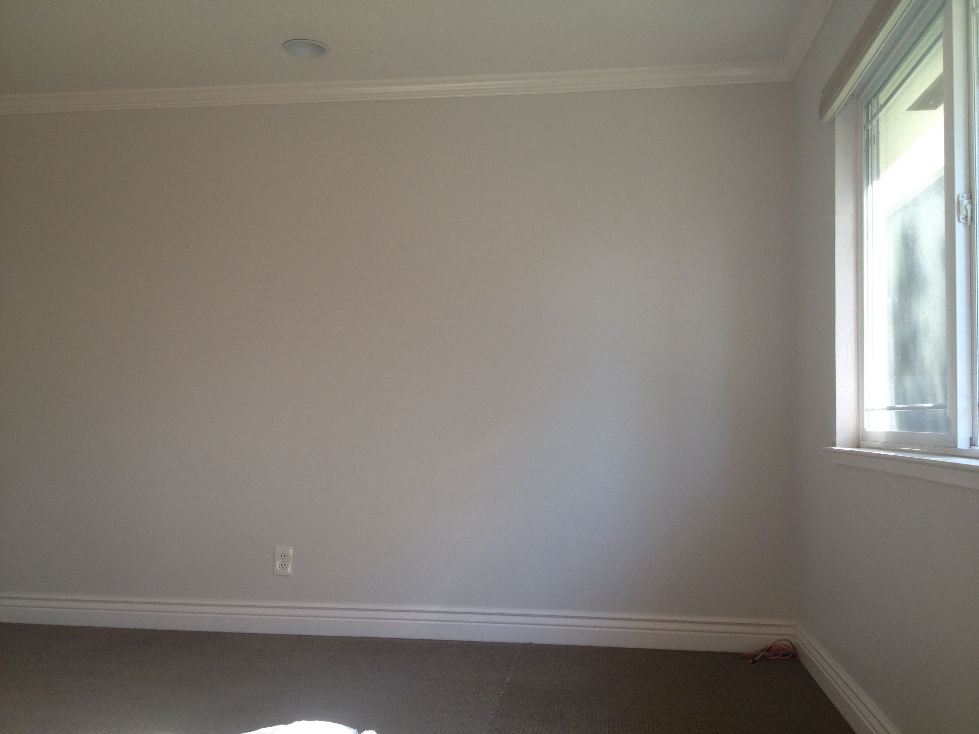 Glidden silver birch from Home Depot Subtle white grey Used in