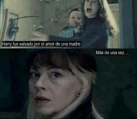 Harry Was Saved For A Mother S Love More Than Once Narcisa Lilly Love Save Malfoy Potter Bab Harry Potter Harry Potter Obsession Harry Potter Memes