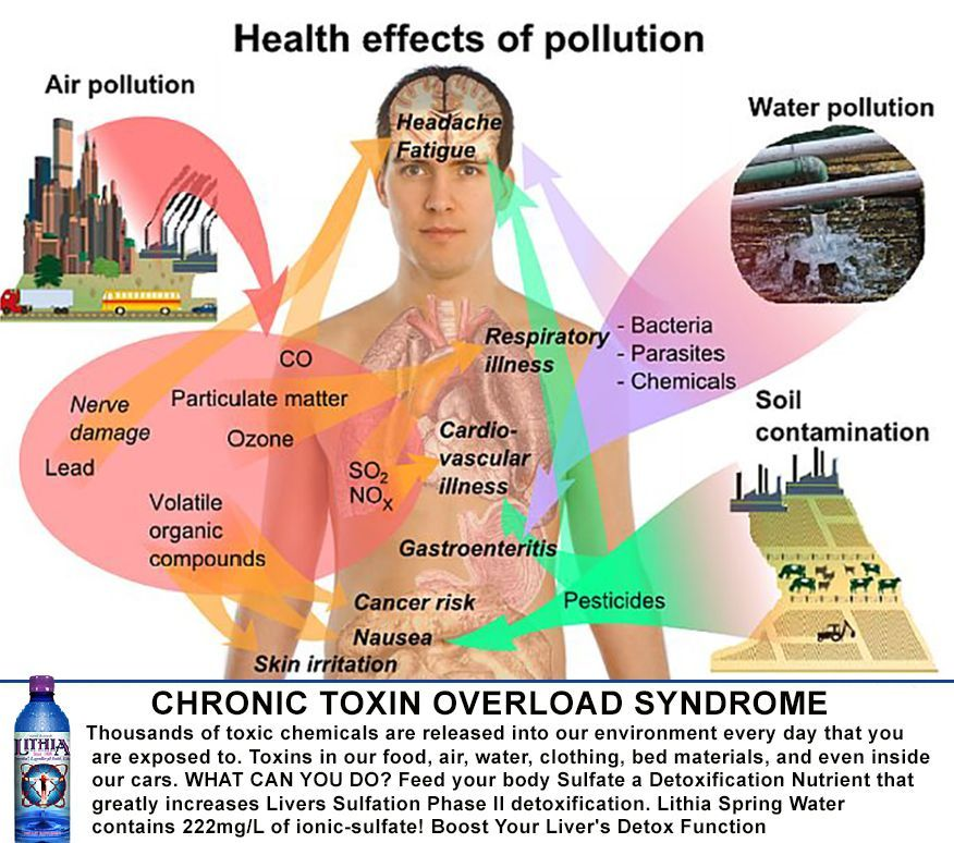 Chronic Toxin Overload Syndrome can cause life-threatening ...