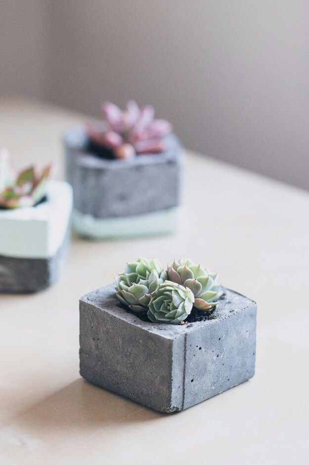 Photo of 33 DIY succulent planters for indoor and outdoor use Ideas to bring fresh freshness everywhere – furnishing ideas
