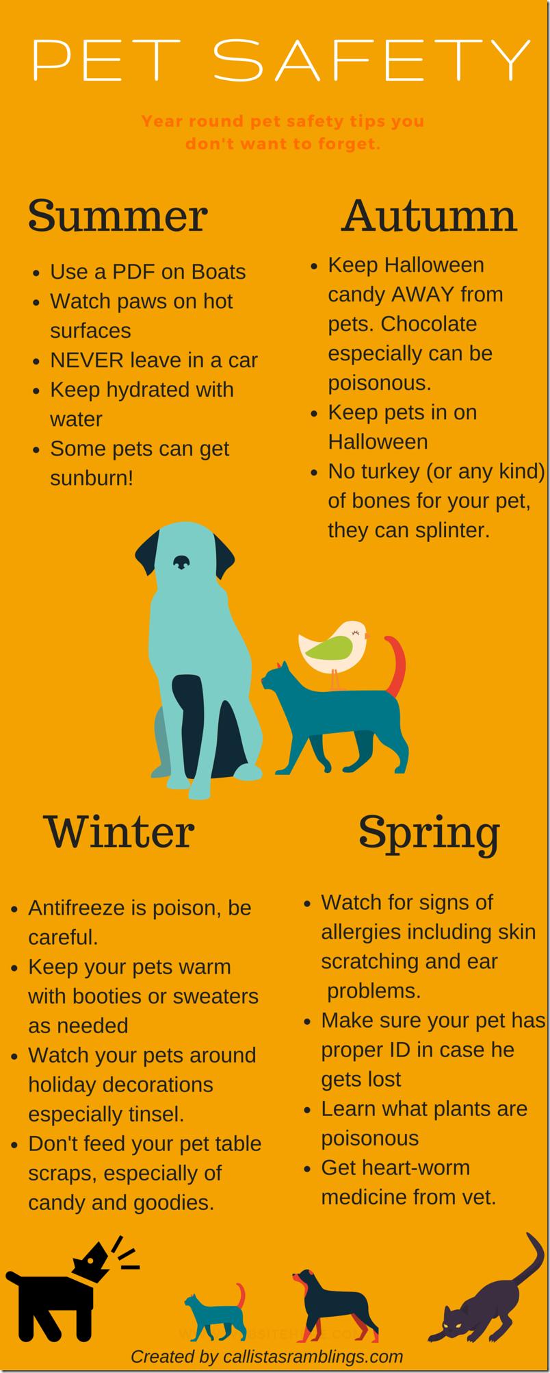 Pet Safety Infographic Dog Care Tips Pet Safety Pet Hacks