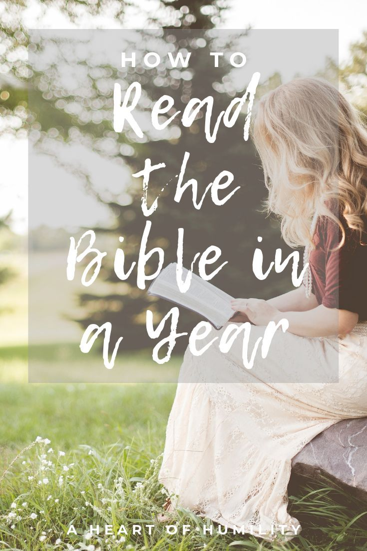 How to read the bible in a year bible in a year she