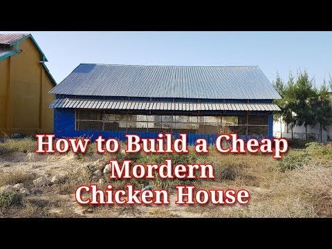 How to build a Cheap Modern Chicken House