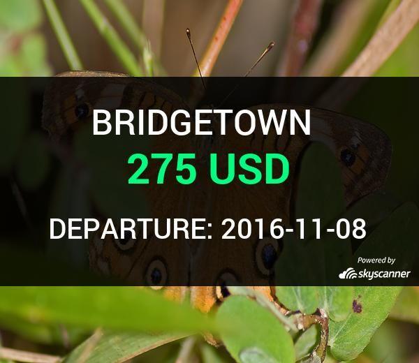 Flight from Seattle to Bridgetown by jetBlue #travel #ticket #flight #deals   BOOK NOW >>>
