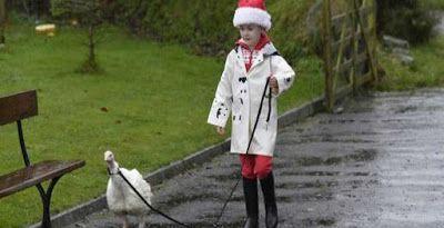 """""""O Grito do Bicho"""": Menina adota peru para salvá-lo da ceia de Natal -..."""