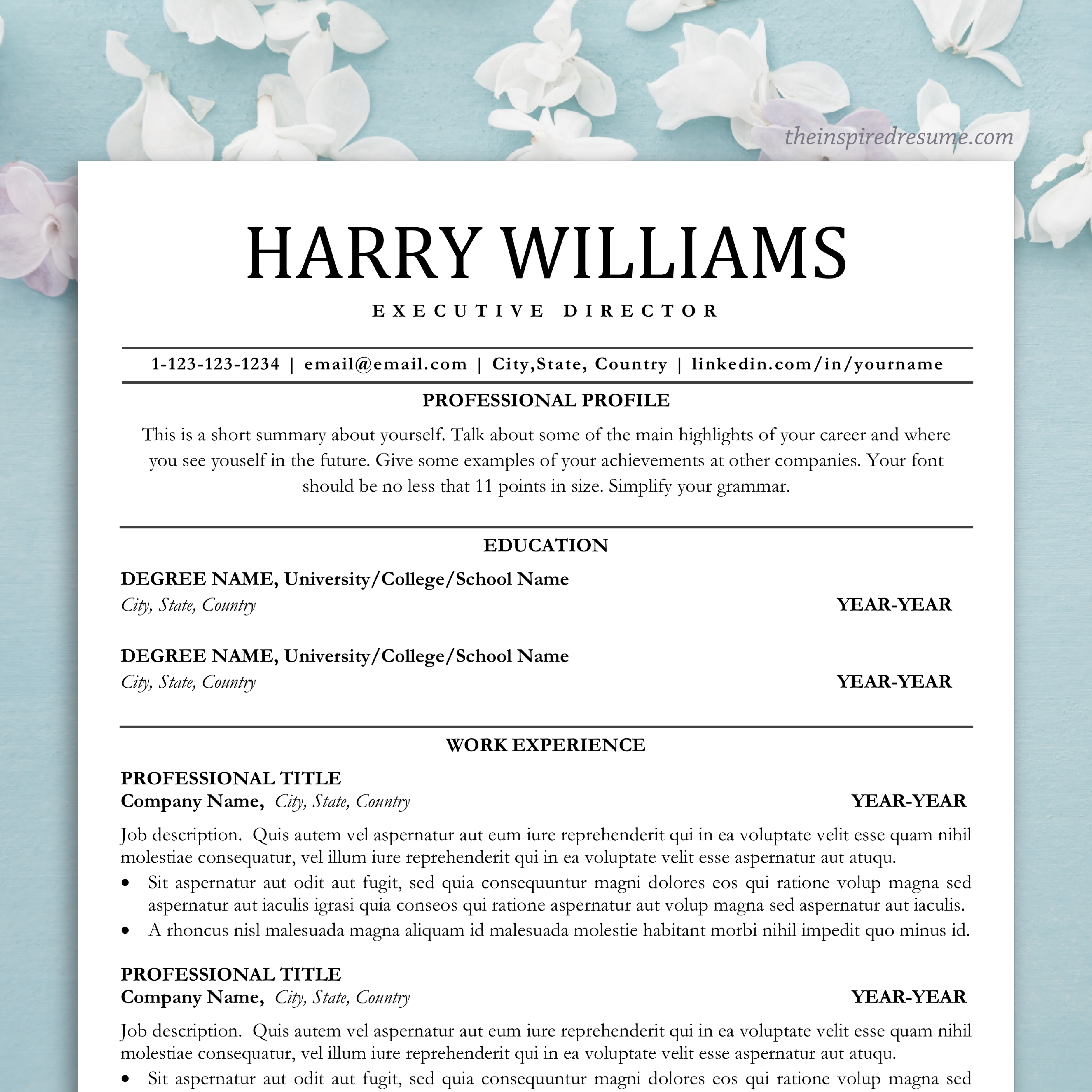 CV Template for Word & Pages, Professional Resume Instant