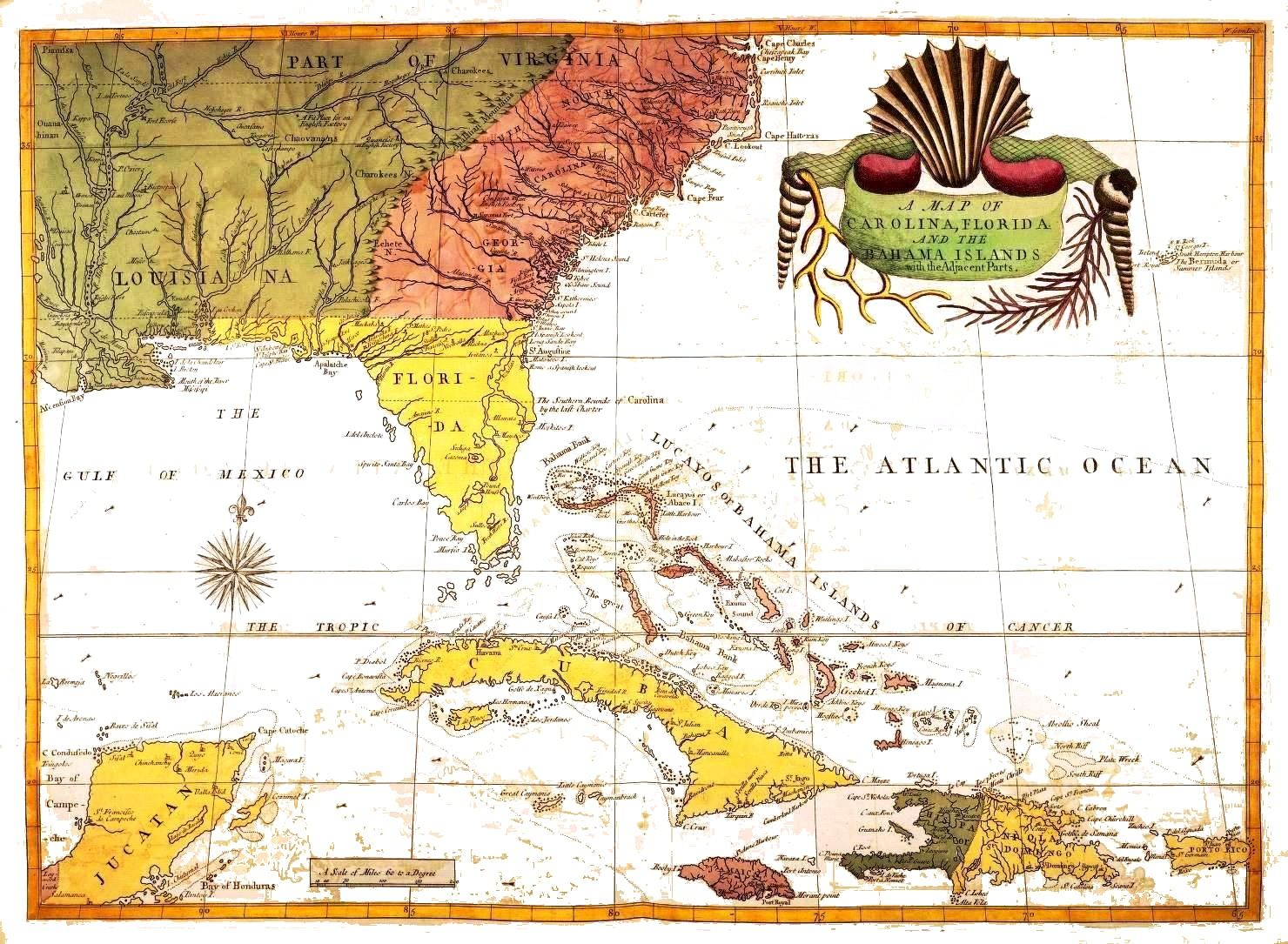 The natural history of carolina florida and the bahama islands by geopolitical map america florida and the bahamas c catesby publicscrutiny Images