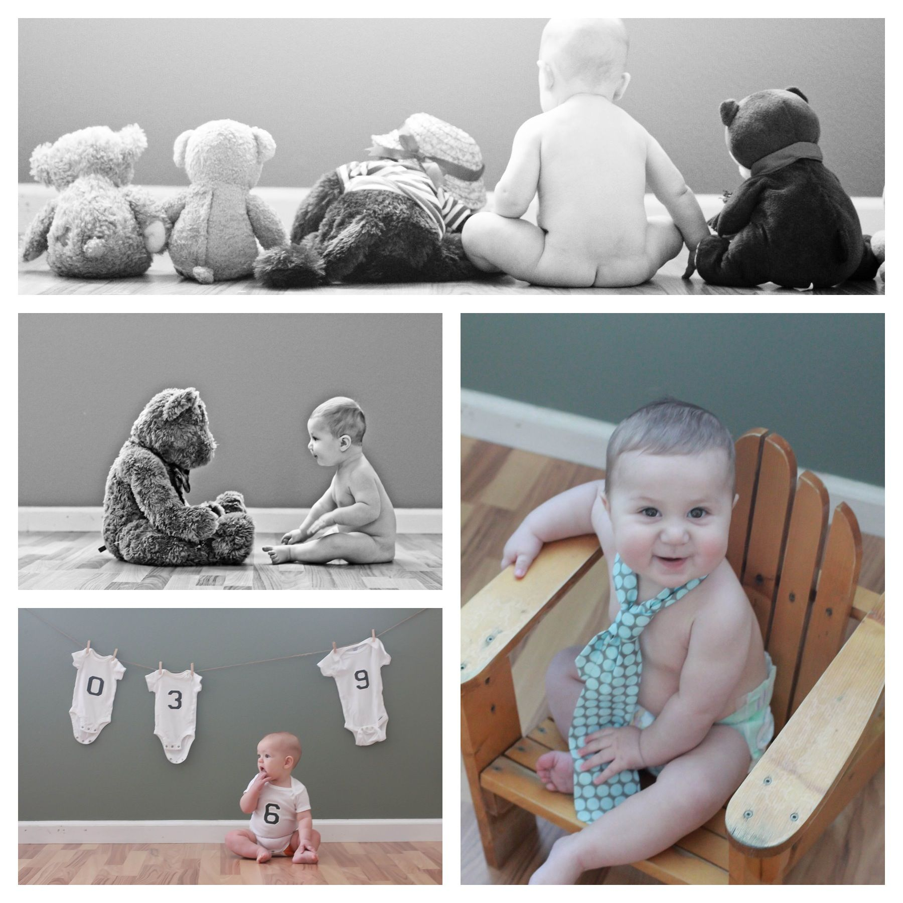 6 month baby picture ideas months ten13photography. Black Bedroom Furniture Sets. Home Design Ideas