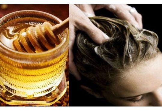 Diese Hausmittel Gegen Spliss Wirken Garantiert Haare Naturlich
