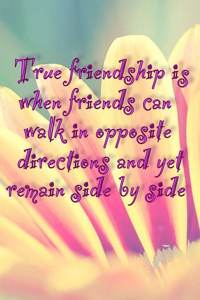 Very Meaningful Quote About Friends. This Is A Challenge!