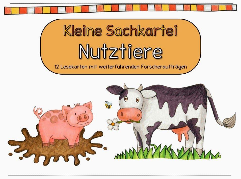 Bauernhof Kartei | karten | Pinterest | Kindergarten