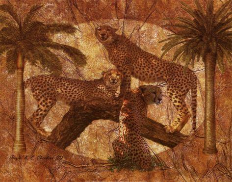 cheetah quilt designs   Jungle Cheetah
