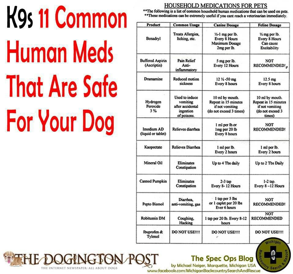 What Household Medicine Can I Give My Dog For Pain