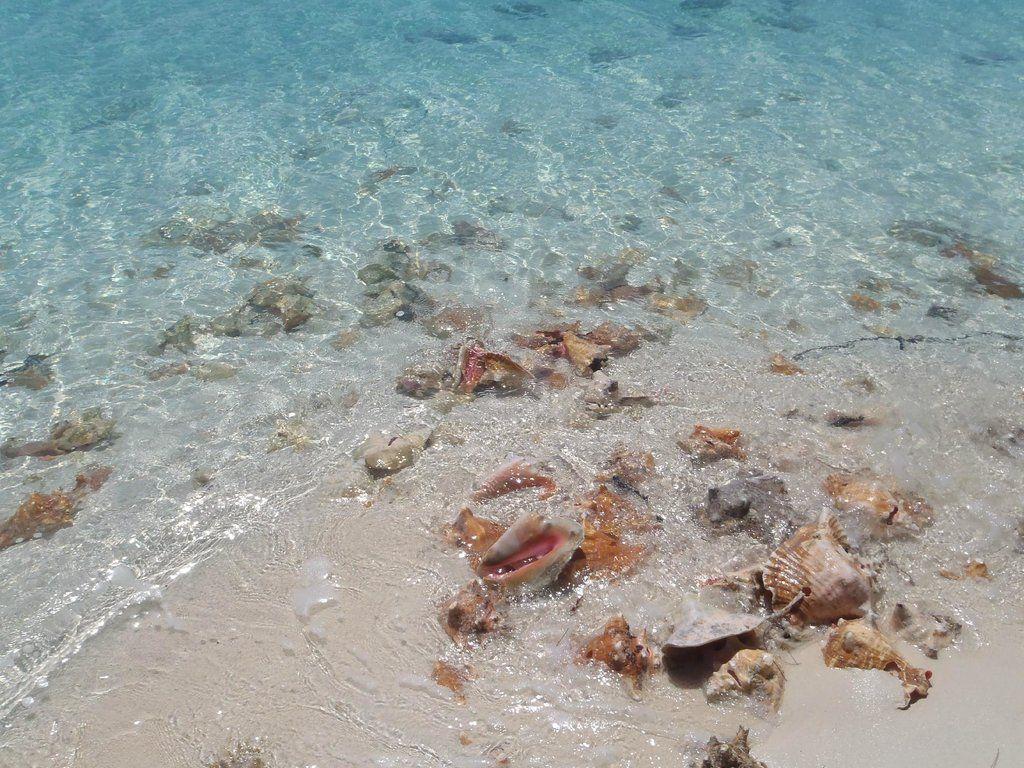 Stocking Island (Great Exuma, Bahamas): Address, Top-Rated Attraction Reviews - TripAdvisor