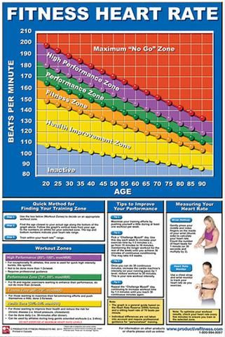 fitness heart rate professional fitness wall chart poster