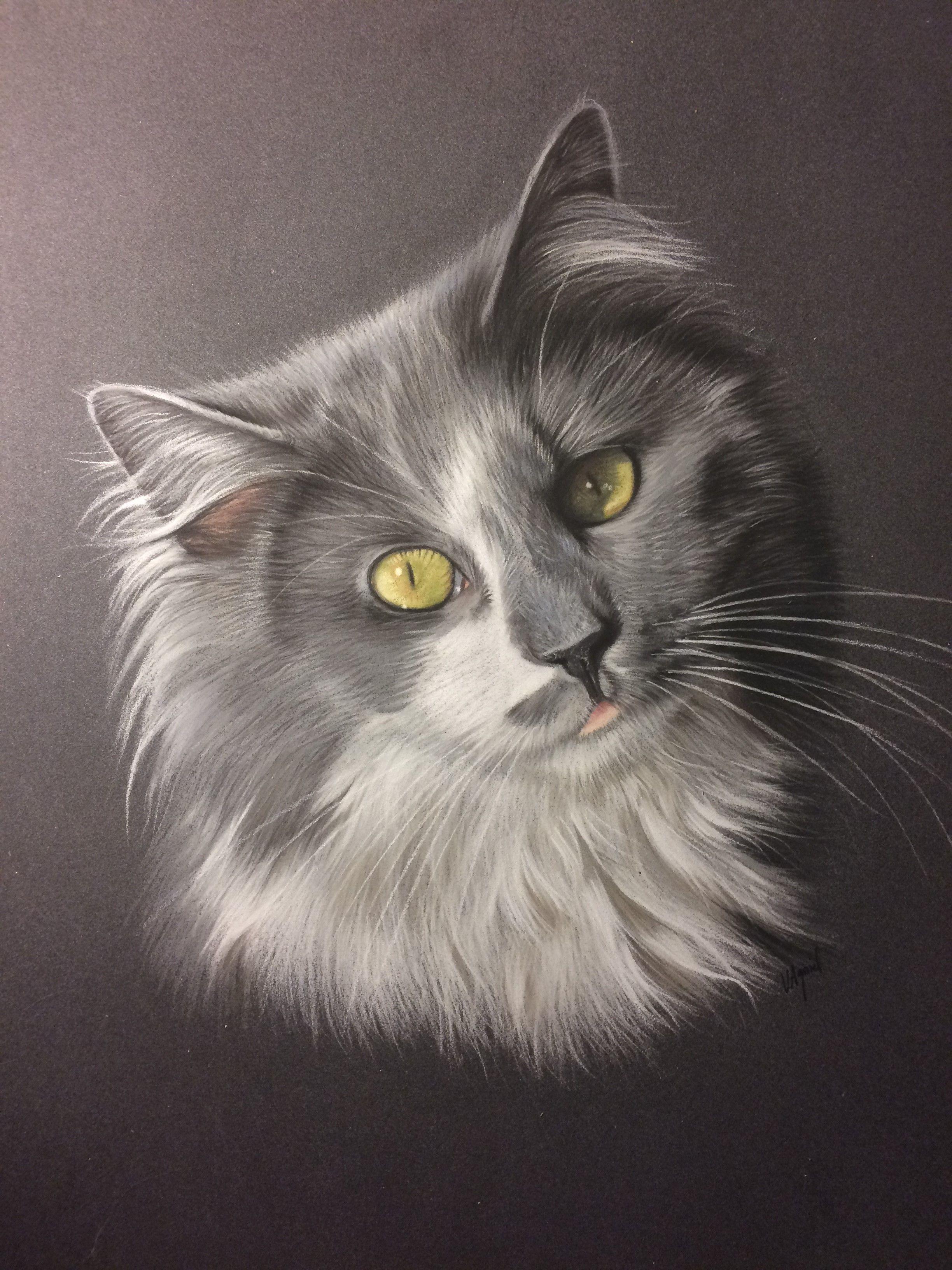 Tableau chat gris portrait 3 59c3f7c7b9a24498569cd557a4de23af