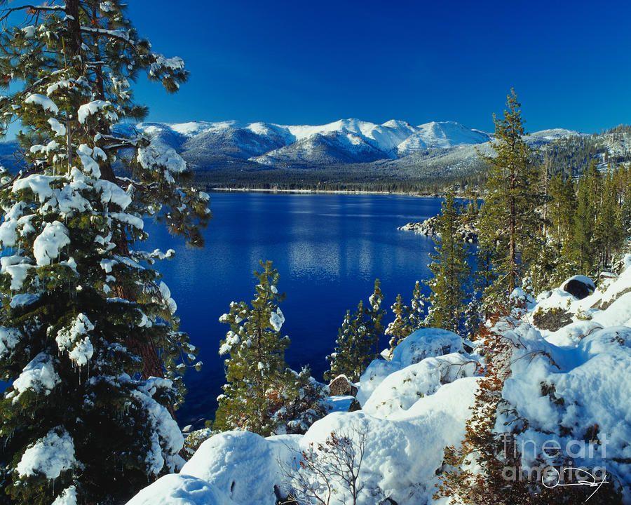Lake Tahoe Winter By Vance Fox Lake Tahoe Winter Tahoe Winter Winter Photograph