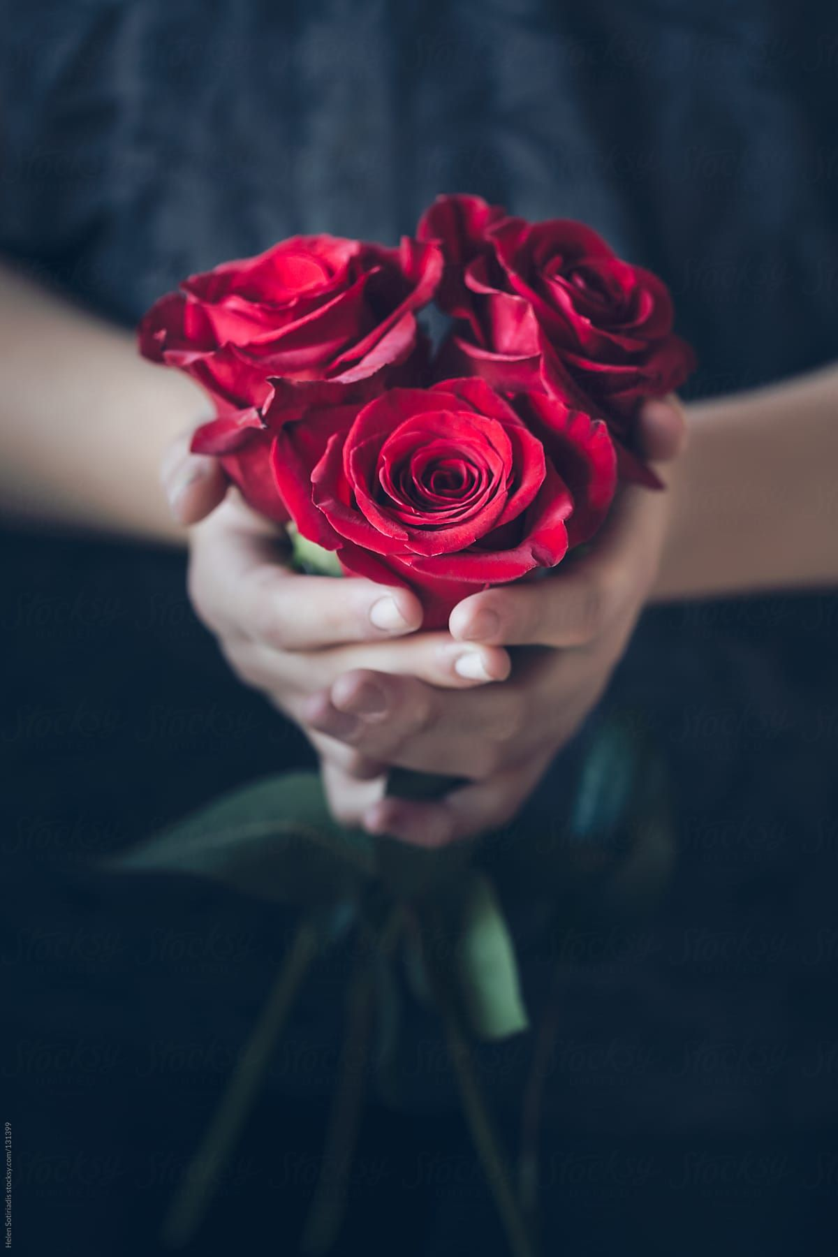 Red Roses Download This High Resolution Stock Photo By Helen Sotiriadis From Stocksy United Red Roses Wallpaper Beautiful Red Roses Beautiful Rose Flowers